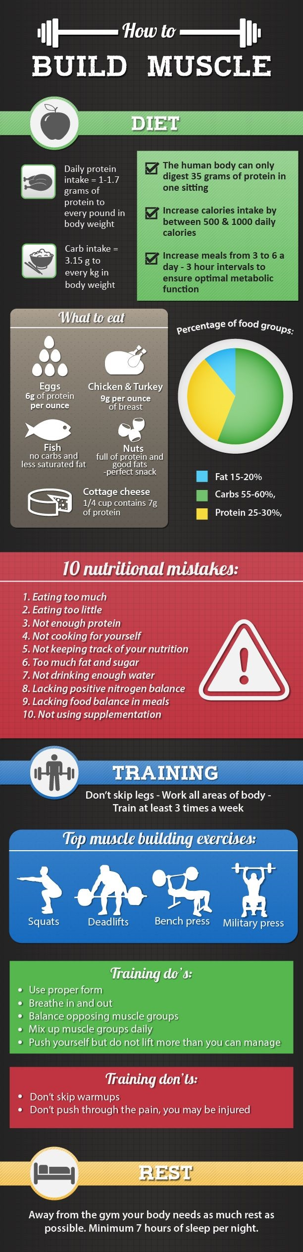 Protein Helps Build Muscle infographics